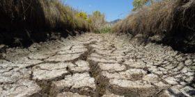 Avanza formalización para construir una planta de tratamiento dentro de los humedales María Eugenia