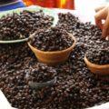 © Hmmm. Caviar mesoamericano. ¡Rico nucú!Mercado San Juan. Tuxtla Gutiérrez (2011)