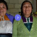 Proyecto Hábitat; llevar la sustentabilidad a hogares de los Altos de Chiapas