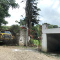 Tribunal suspende construcción de hotel en bosque mesófilo de montaña