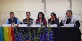Colectivo LGBTTTI, sin derechos humanos básicos ni derechos políticos electorales