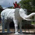 Con llantas, artesano chiapaneco crea elefantes, retroescabadoras y helicópteros