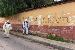 Encerrarse durante la pandemia ha sido privilegio de pocos. Y ese sector, en este Chiapas de desigualdades, ha comenzado a salir a la calle. No tenía muchas opciones: el encierro también enferma y desgasta.