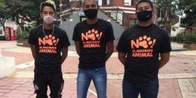 Por maltratar un gato, tres jóvenes son condenados a servicio comunitario en Cintalapa