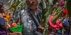 El baile de la milpa por la buena cosecha