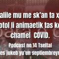 fondo-podcast-14-tseltal