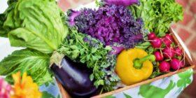 Más que un régimen alimenticio, el veganismo es un estilo de vida. Cortesía: Qué Significa.