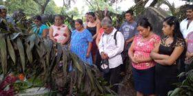 Tras 14 años, CIDH admite caso de la Masacre de Viejo Velasco. Foto: Frayba