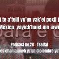 fondo-podcast-28-tseltal