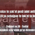 fondo-podcast-30-tseltal