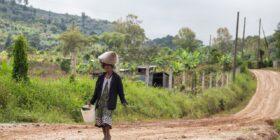 En la comunidad de Lepaguare, en el departamento de La Paz, una mujer indígena carga en su cabeza una bolsa con fruta de café cosechada para el consumo de su hogar. Lepaguare, La Paz, 19 de octubre de 2020. Foto: Martín Cálix / Contracorriente.