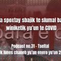 fondo-podcast-31-tseltal