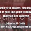 fondo-podcast-36-tseltal
