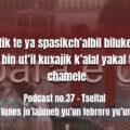 fondo-podcast-37-tseltal