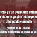 fondo-podcast-41-tseltal