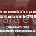 fondo-podcast-42-tseltal