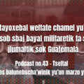 fondo-podcast-43-tseltal
