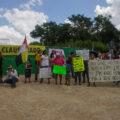 La Corte decidirá si protege a la infancia de los daños de una granja porcícola en Homún