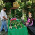 """Puedes ganar una de las plantas de ornato. Cortesía: Dirección de Jardín Botánico """"Dr. Faustino Miranda"""""""
