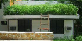 Los techos verdes reducen la contaminación ambiental y proporcionan oxígeno. Cortesía: Techos verdes/Facebook