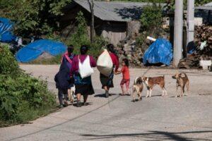 Un aproximado de 2 mil personas originarias de los municipios de Pantelhó y Chenalhó se encuentran desplazadas en San Cristóbal de Las Casas y Chenalhó. Cortesía: Frayba