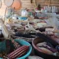 Semillas protegidas por la Casa del Maíz Tlajomulco
