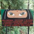 Imagen: http://amerikabizirik.blogspot.com/2009/06/huitepec-area-natural-protegida-reserva.html