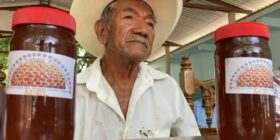 Productores de miel en Carranza en crisis por violencia y falta de apoyos