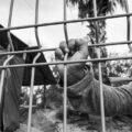 Corte de EEUU ordena restablecer el programa «Quédate en México»