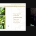 """Presentación del libro """"Plantas comestibles del solar Maya Ch'ol, Chiapas""""."""