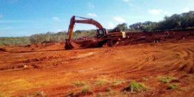 Avanza la deforestación en la Península de Yucatán; crecen granjas de cerdos y minas de tierra